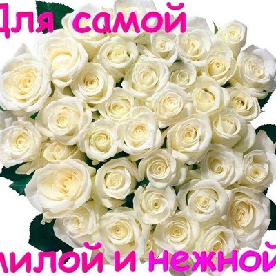 Валерий Зубилов, Череповец, id192522551