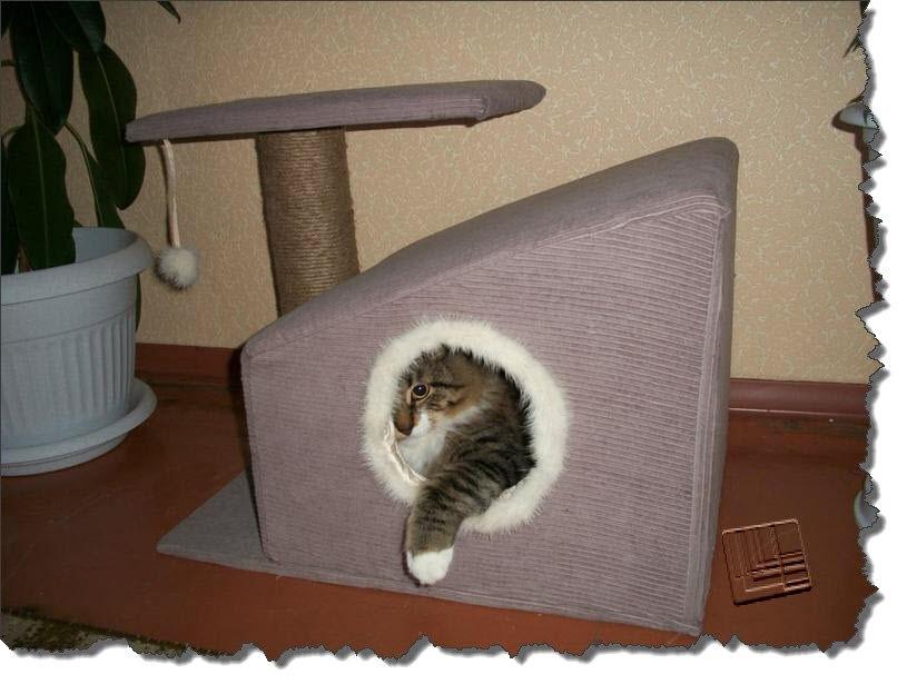 Как построить домик для кошек своими руками