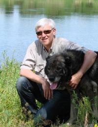 Дмитрий Мирный, 20 марта 1991, Соликамск, id159865572