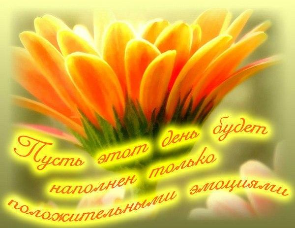 Утром 19 дек 2011 пожелания доброго утра