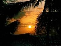 شمس المحبه, 2 февраля 1997, Махачкала, id185749135