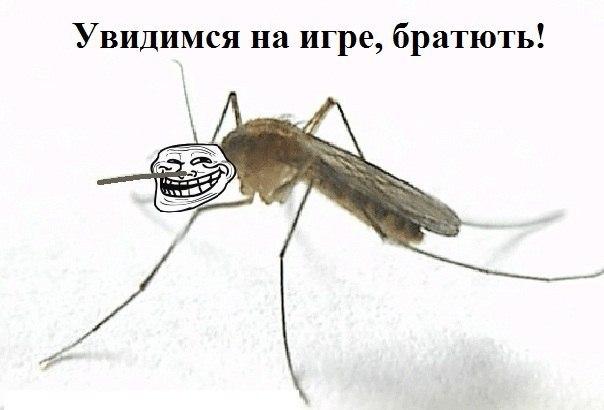 http://cs304911.userapi.com/v304911186/5f7/Furj4EsAEwI.jpg