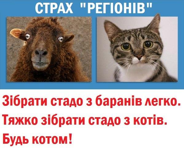 90% украинцев поддержат национализацию Межигорья и 80% - отставку Януковича, - братья Капрановы о референдуме - Цензор.НЕТ 3509