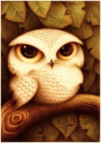 Милые рисунки животных отFabo., Глазастые пушистые комочки— Фото № 8