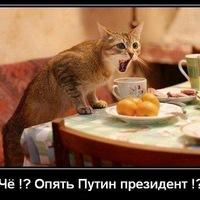 Колян Юшин, 29 сентября , Санкт-Петербург, id64140105