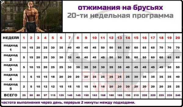 программа тренировки дома для женщин для похудения