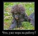 Артём Карамаев фото #21