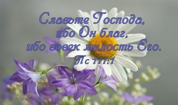 http://cs305205.vk.me/v305205915/53cd/m-kdxqaydNI.jpg