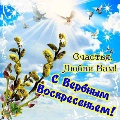 http://cs305215.vk.me/u61270859/-14/x_5b20418e.jpg