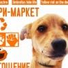 Благотворительная ярмарка ко Дню защиты животных