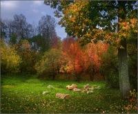 Юлечка Шагренева, 8 октября 1998, Стерлитамак, id175324071