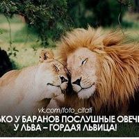 Оля Микитка, 30 июля 1980, Львов, id156428085
