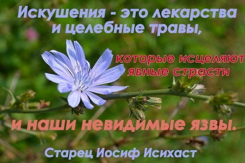 http://cs305403.userapi.com/v305403290/35b2/W52rEw2nTOg.jpg