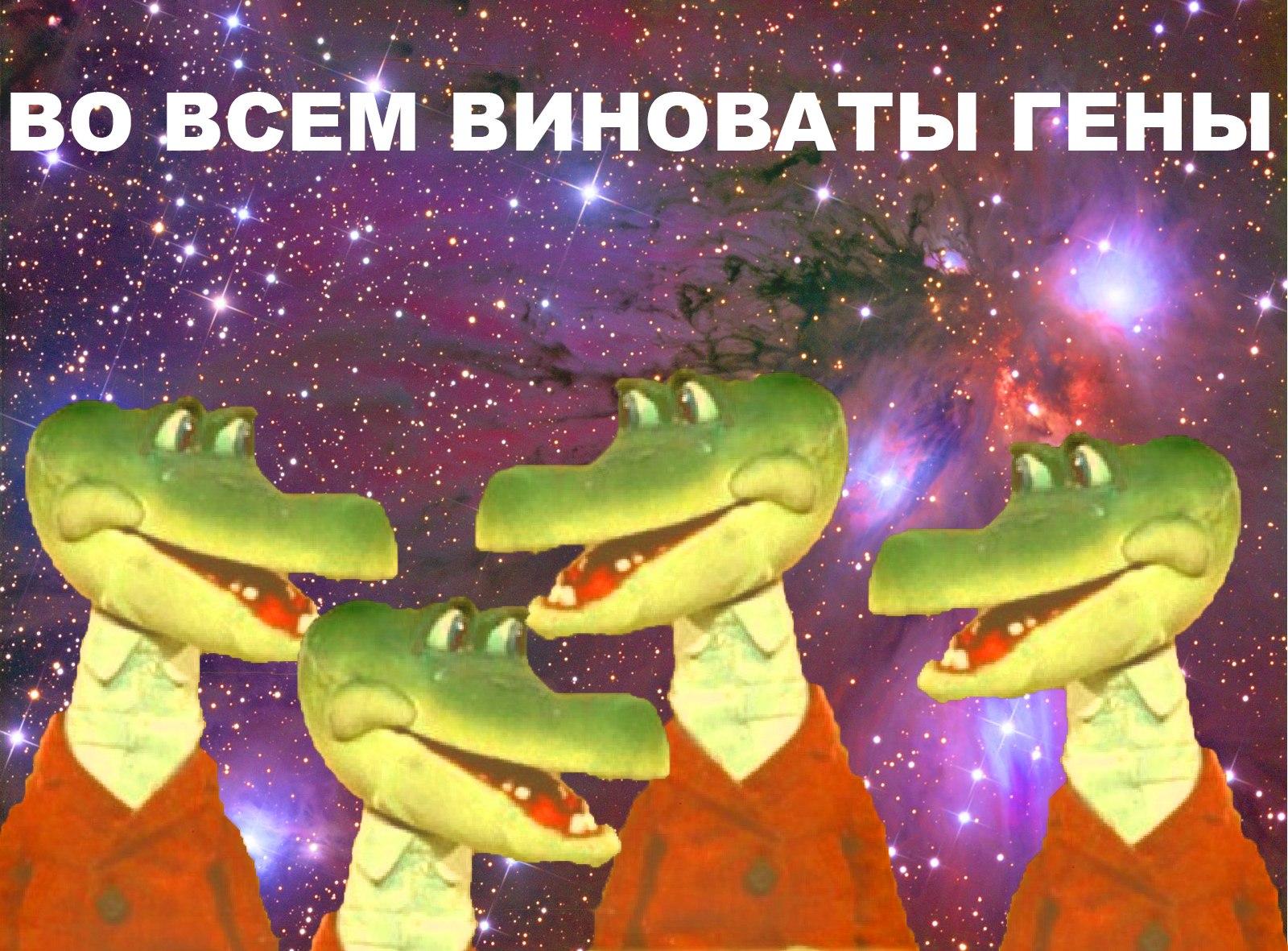 Пользователь добавил изображение