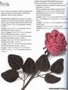 Схемы цветников из многолетников в тени