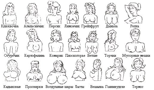 ну колитесь какие у вас сиськи?)))))))))