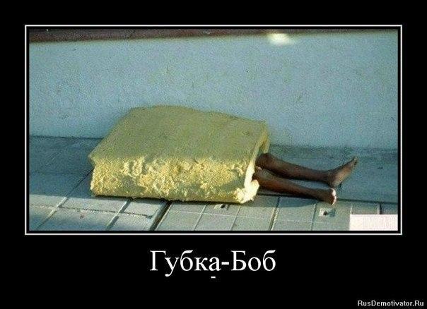 http://cs305406.userapi.com/u165134271/-14/x_c0e3ac3e.jpg
