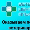 АЛЬФА-ВЕТ Ветеринарный центр Самара