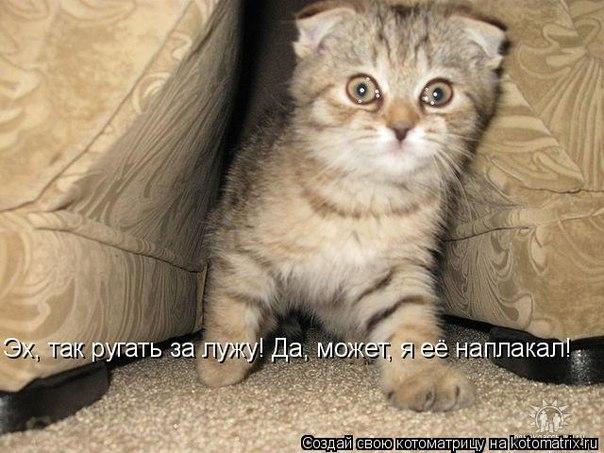 РЕЛАКСАЦИЯ))))) - Страница 4 X_3a343ea8