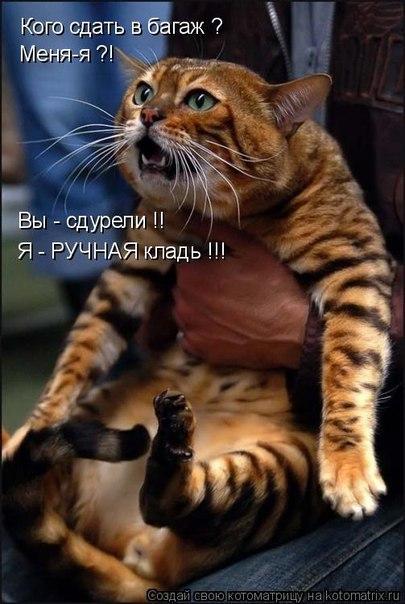РЕЛАКСАЦИЯ))))) - Страница 4 X_6b32c9c9