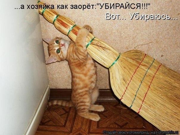 http://cs305509.vk.me/v305509320/1e77/M_LNX3xo_64.jpg