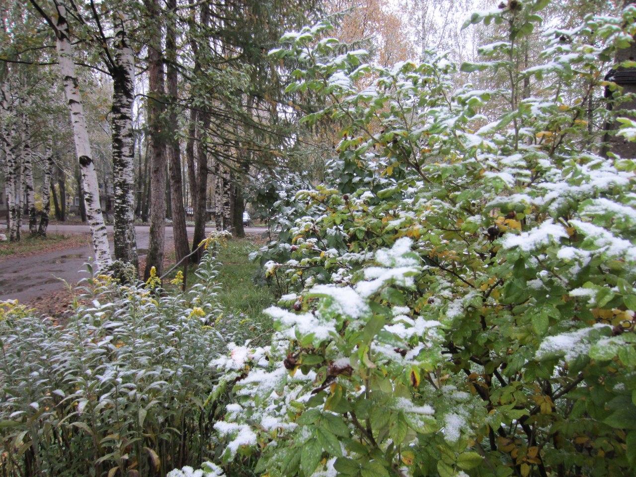 Ну и погода в Кирове - Прогноз погоды на 2 недели
