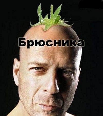 http://cs305602.vk.me/u138264322/-14/x_c434ff34.jpg