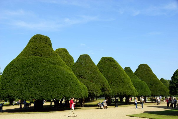 Hampton court. London