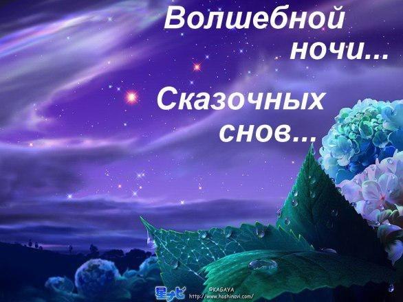 http://cs7056.vk.me/c305607/v305607782/5a97/b8DOEuSMlc4.jpg