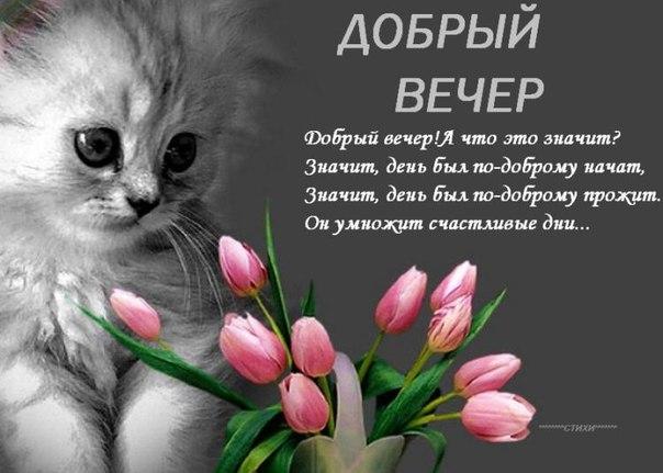 http://cs305607.vk.me/v305607782/6a6e/p2igEa_G1fg.jpg