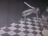 New Selection of Funny Videos October 2013 - Новая Подборка Приколов Октябрь 2013