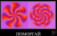 Роман Охапський, 21 июня 1995, Николаев, id103980531