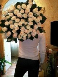 Евгений Мочалов, 28 ноября , Йошкар-Ола, id131849131