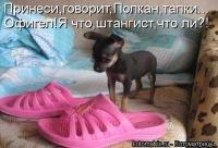 Slava Nightmare, 17 октября 1989, Одесса, id181359695