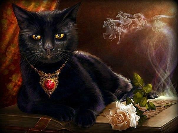ЧС'рный кот: предпросмотр