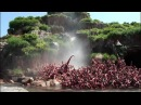 Splash Mountain POV Log Flume Water Ride Tokyo Disneyland Japan 1080p HD