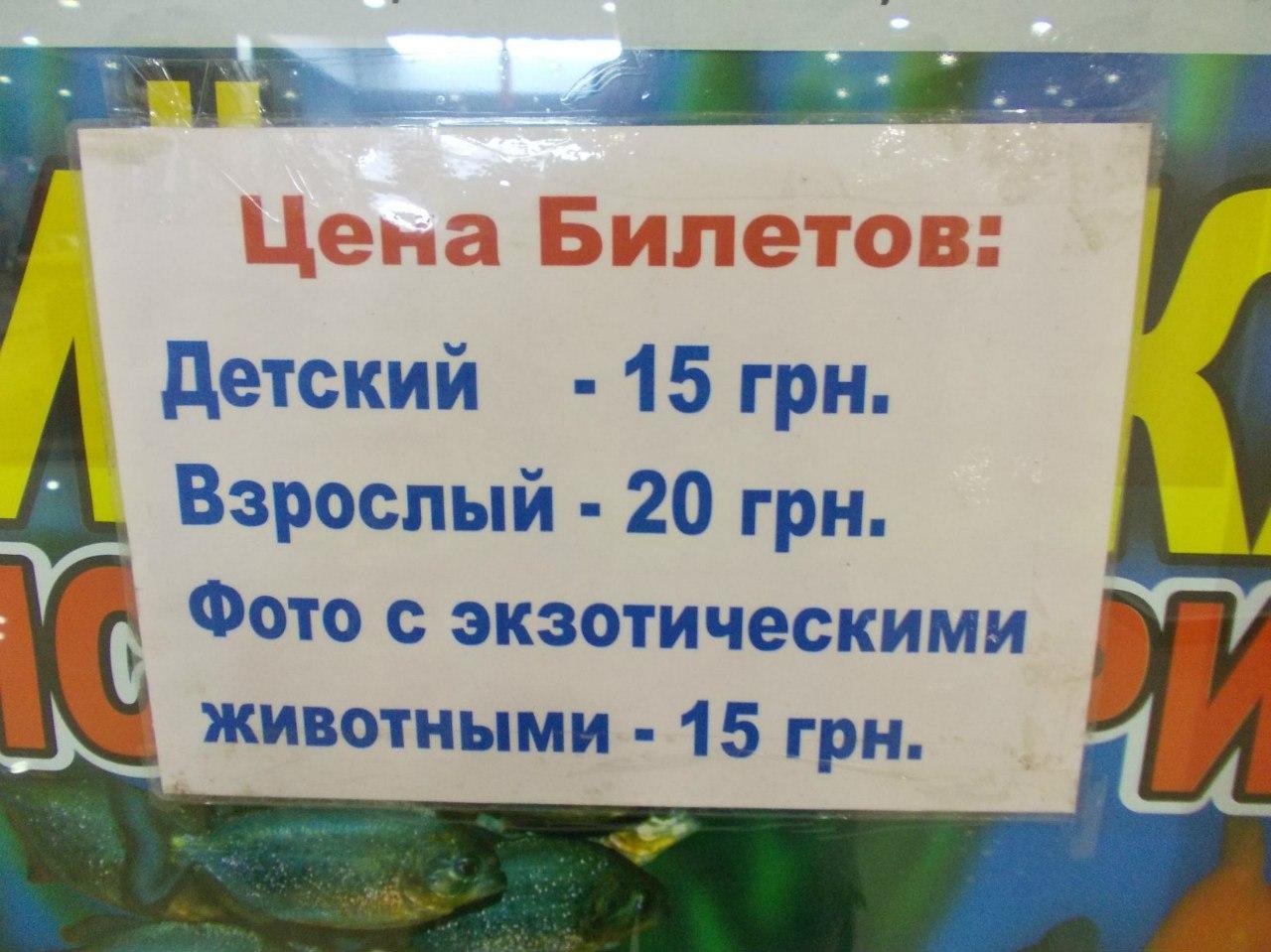 вартість квитка на київську виставку риб