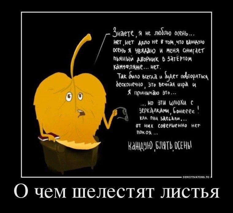Магазине наверняка текст песни не страшны тебе ни дождь ни слякоть Артема Лукича Шеврикука