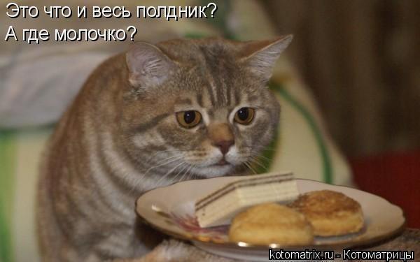 http://cs305704.vk.me/v305704192/3703/_-e7PRxhNCc.jpg
