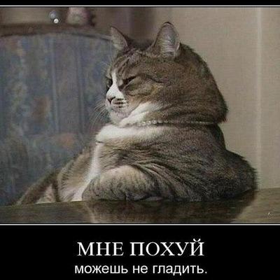 Илья Моков, 17 марта 1991, Москва, id117311374