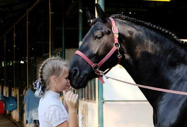 Молодая москвичка из Русского поселка в Таиланде чуть не выиграла турнир по конному спорту Chomviev Chempion Cup