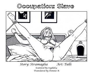 Occupation Slave