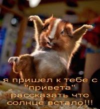 Анастасия Широкова, 4 декабря 1998, Новосибирск, id157009723