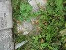 Воинское захоронение дер. Верхнее Заозерье, Любытинский р-н, Новгородская обл. WvEkaurZjAA
