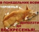 Оличка Масленкова фото #14