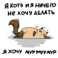 http://cs305810.vk.me/u184528692/a_6b3fc2b7.jpg
