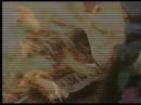 «Двуязычный любовник» (1993): Трейлер  Официальная страница