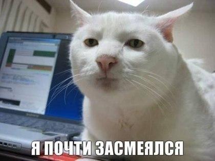 Дмитрий Антонов, Москва - фото №7