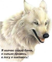 Димон Пархоменко, 15 августа 1992, Владивосток, id165311211
