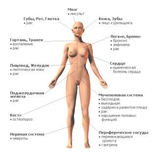 lechenie-prostatita-maslom-tmina